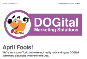 DOGital Marketing - Mailchimp email
