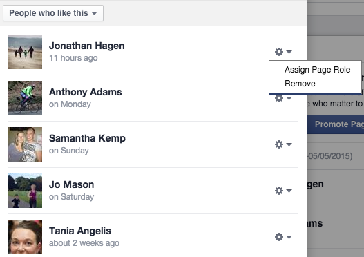 Adding a Page role on Facebook Pages