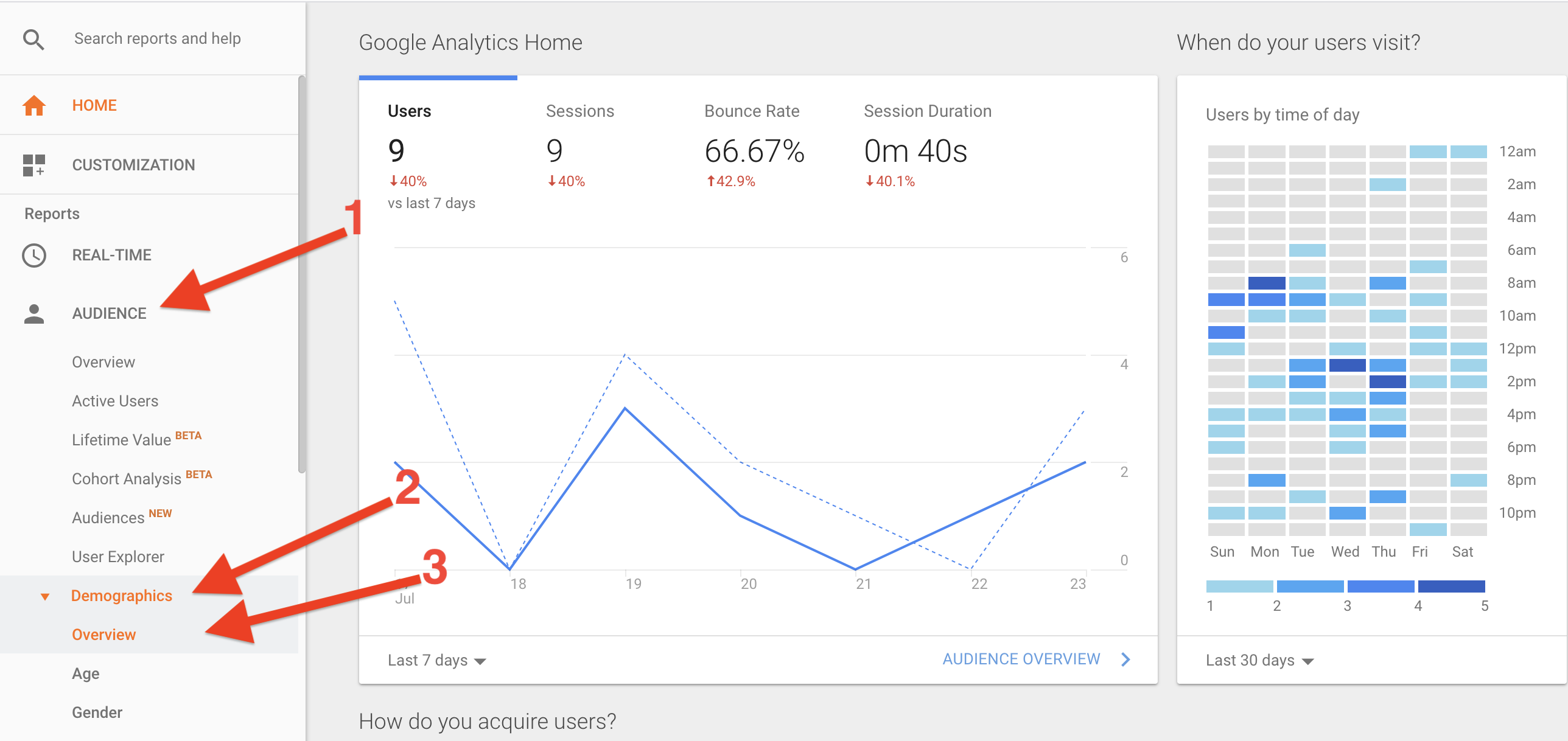 Demographics overview in Google Analytics
