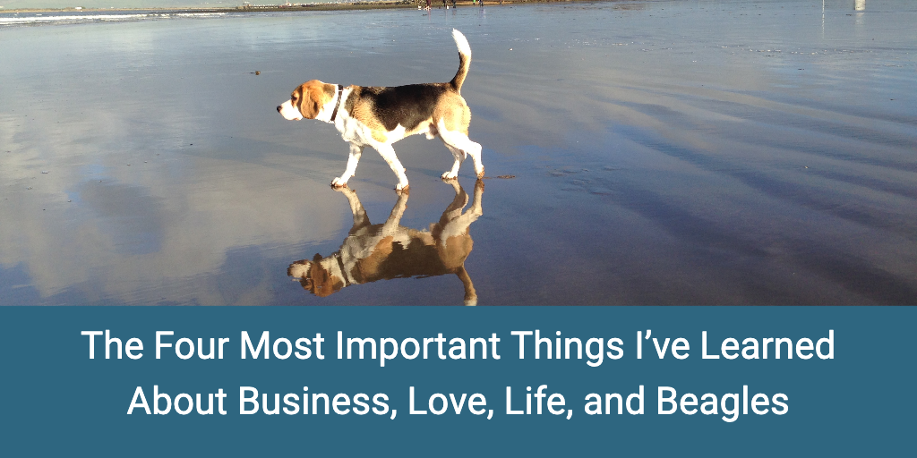 The four most important things I've learned about business, love, life, and Beagles